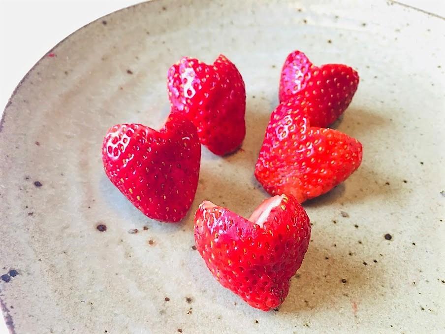 strawberry (14)