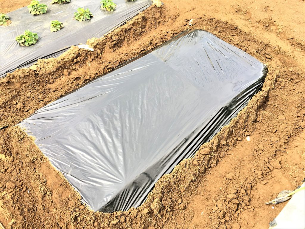 agricultural mulch (2)