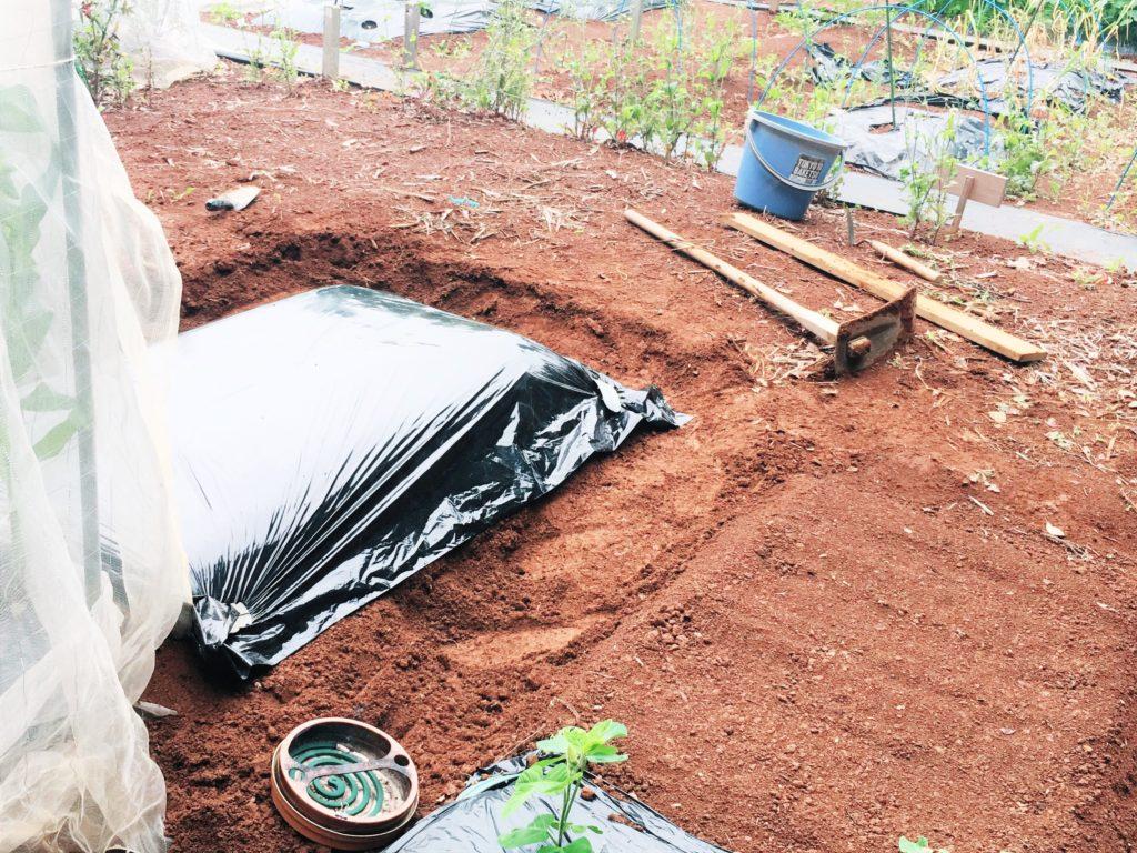 agricultural mulch