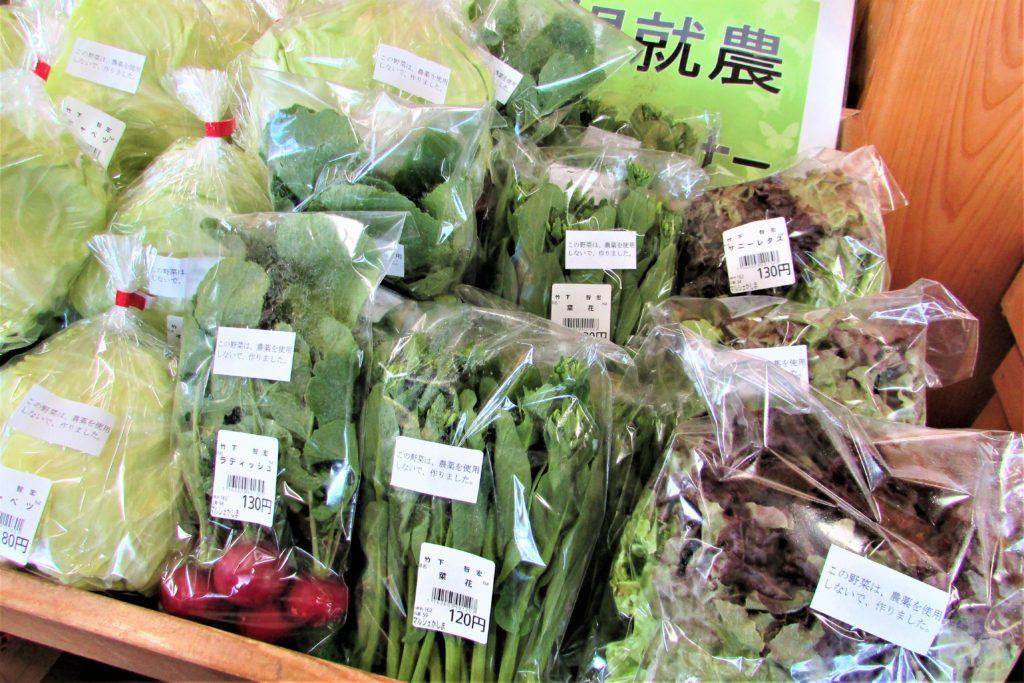 sakura tulip festa2019_Vegetable(3)