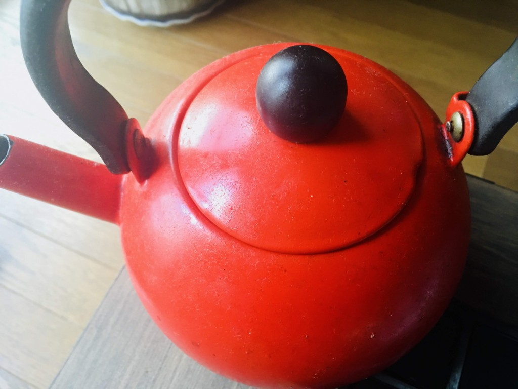 enamel kettle (3)