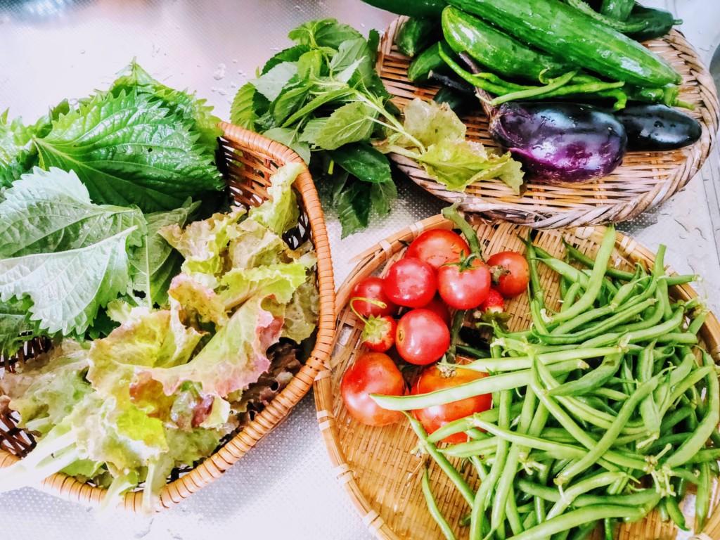 vegetables_2020