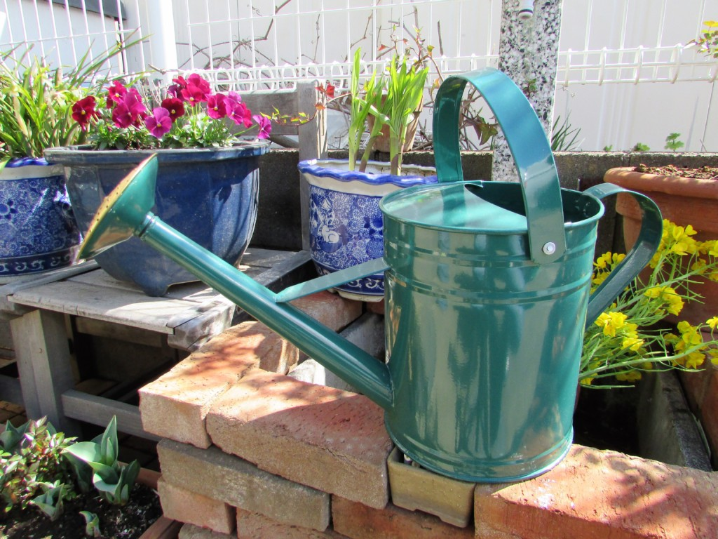 watering can (1)