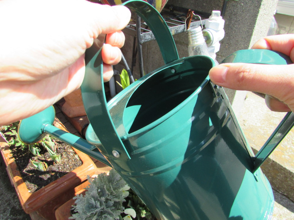 watering can (3)