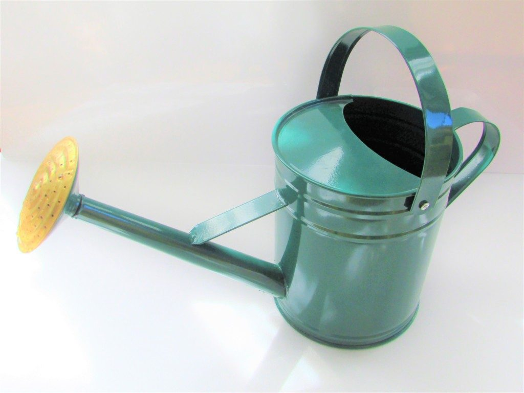 watering can (5)