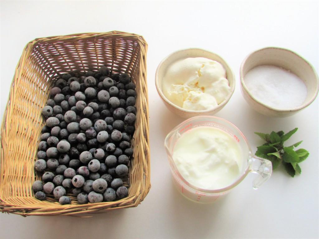 blueberryfrozenyoghourt