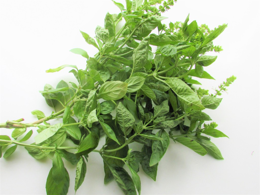 dried-basil (1)
