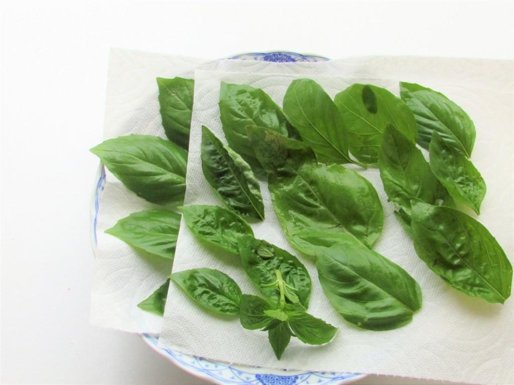 dried-basil (4)