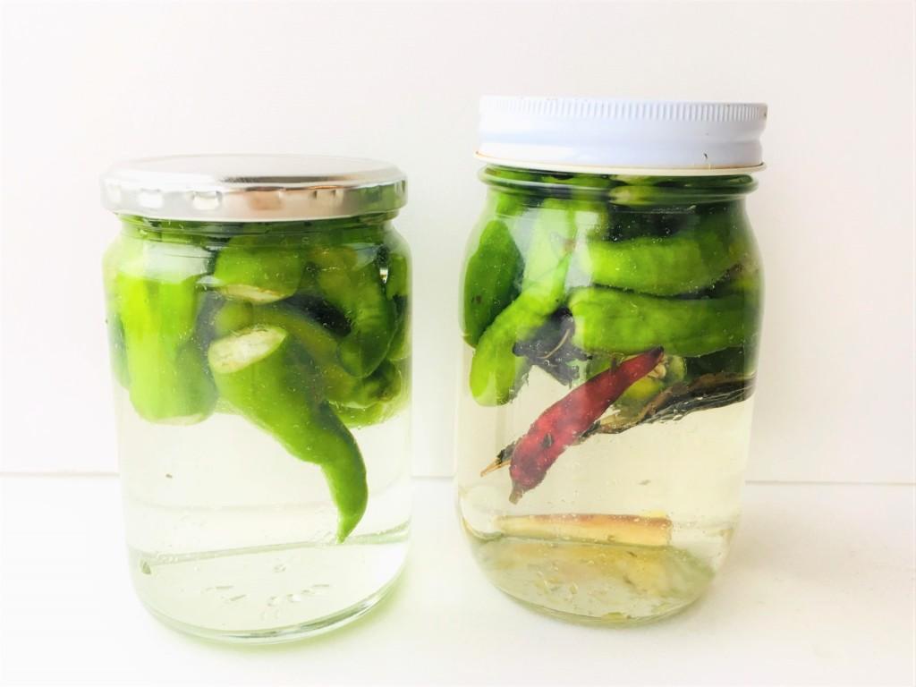 pickles (11)
