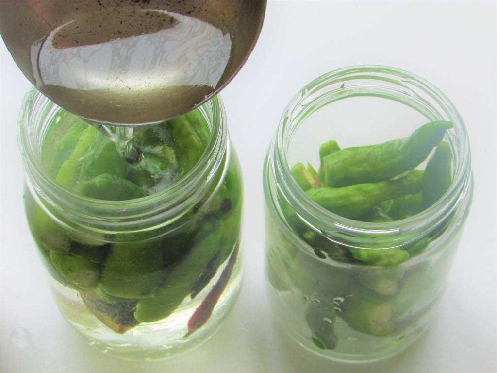 pickles (15)