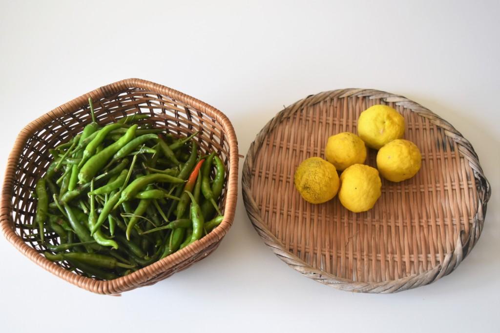 yuzukosho,citron