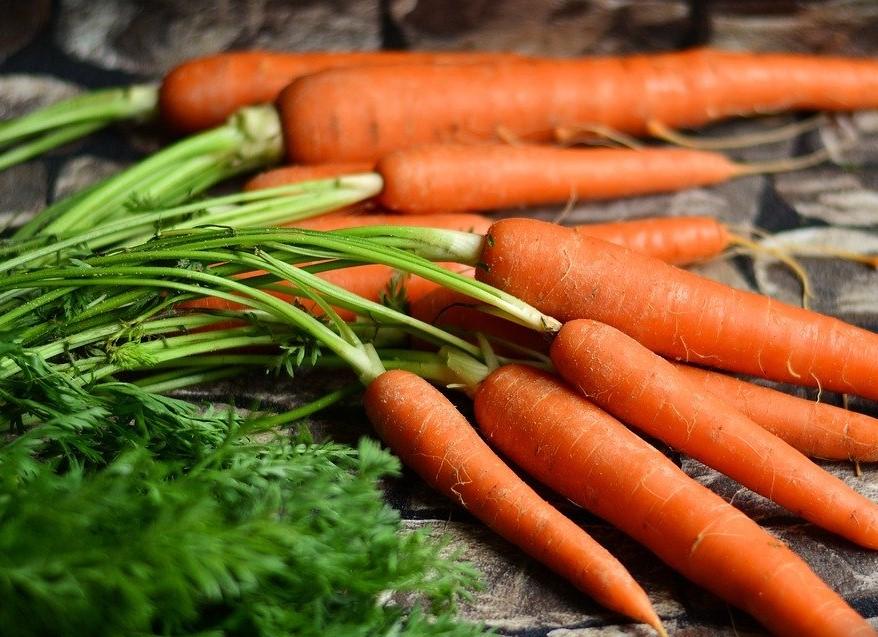 carrot-7