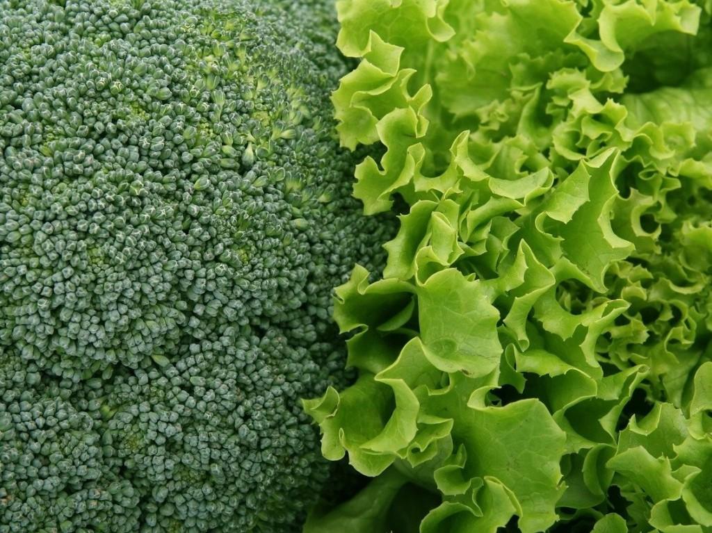 lettuce&broccoli