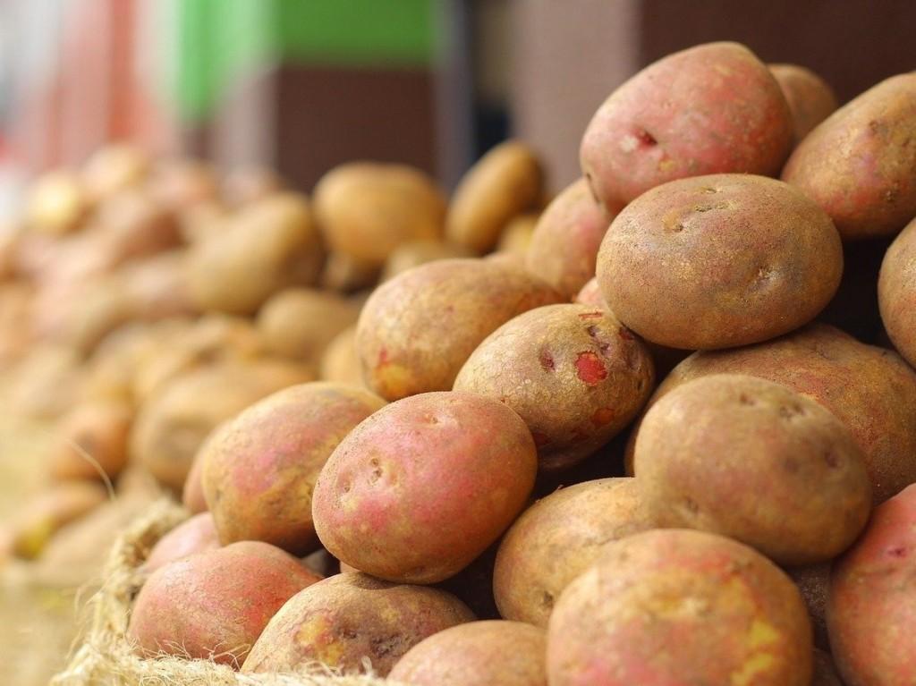 potato-5
