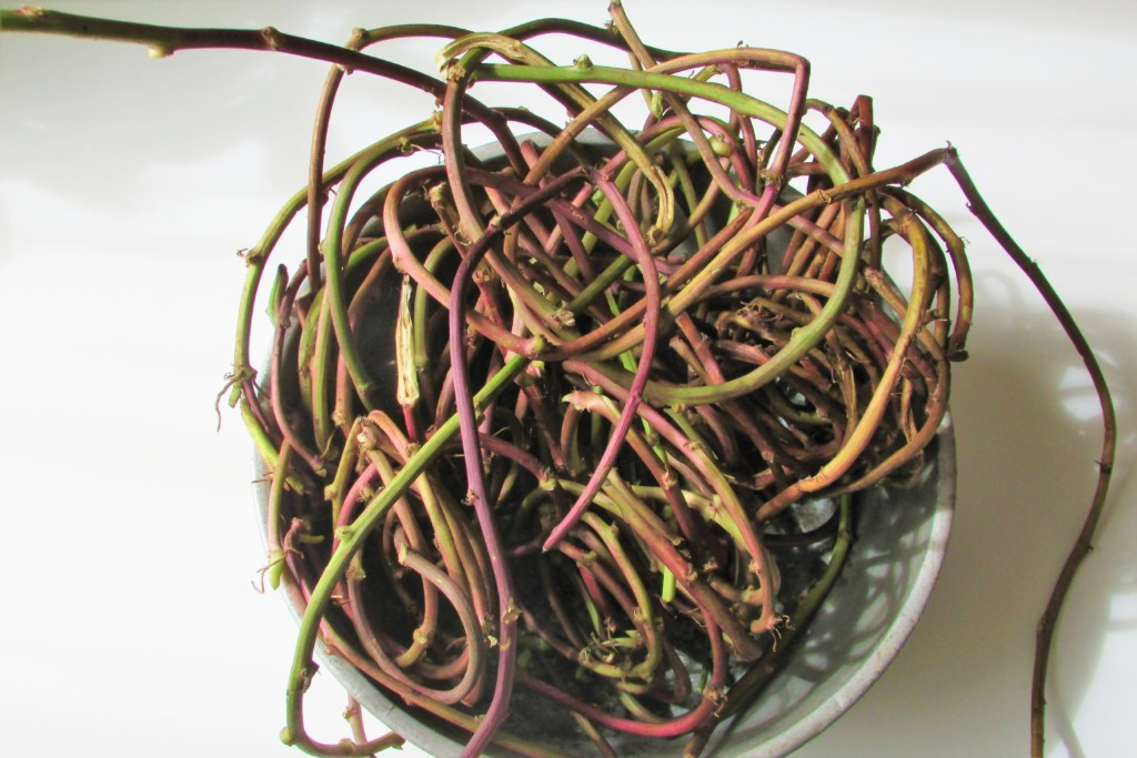 sweetpotato-wreath-1 (1)