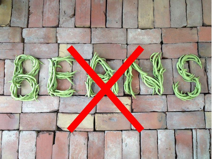 bean5