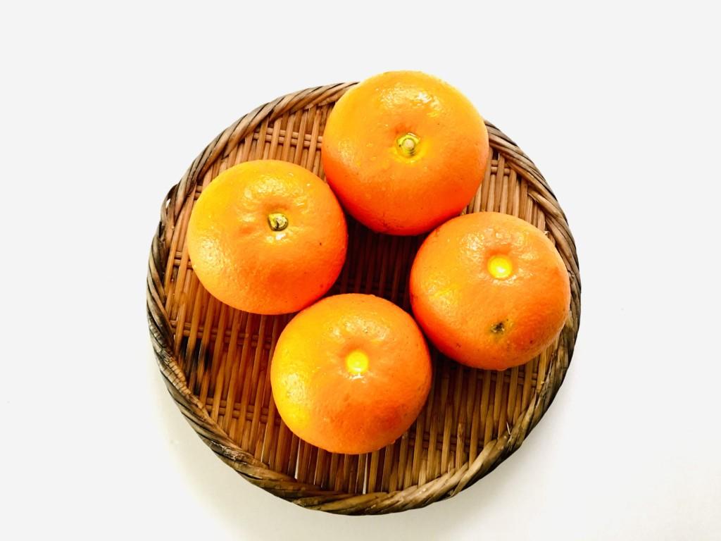 daidai-marmalade (1)