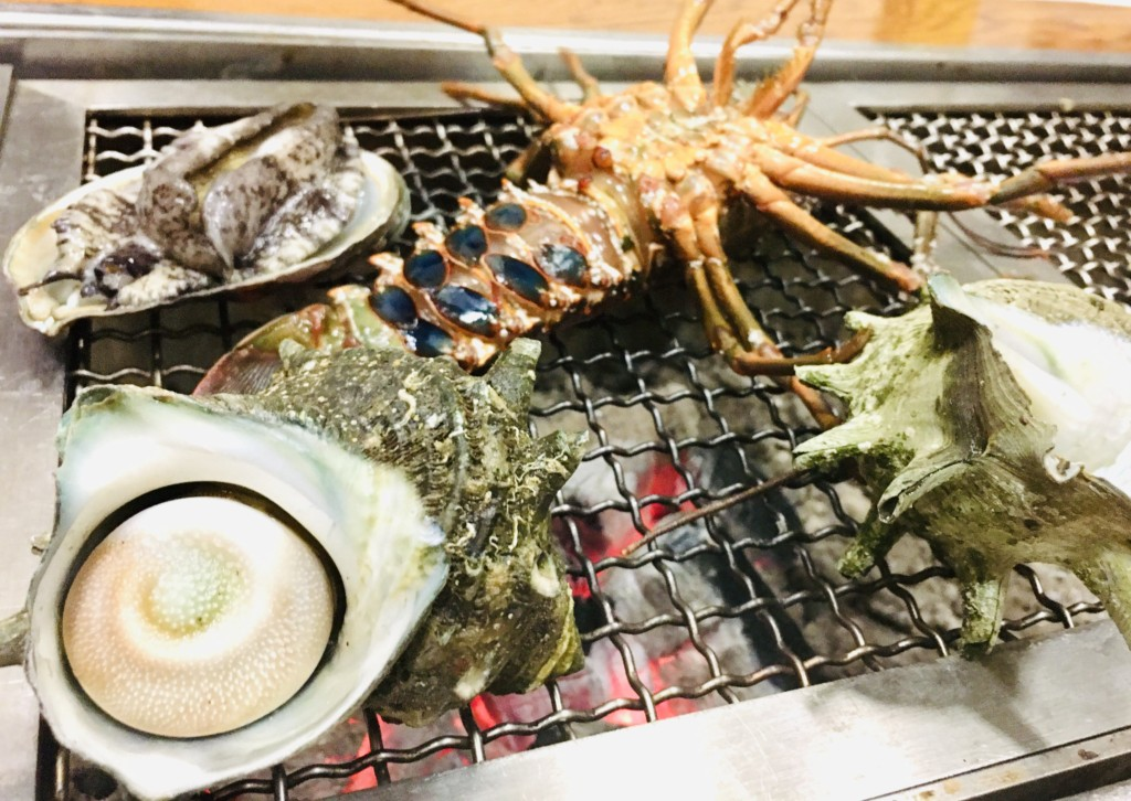 shimoda,suzaki,kohaji (27)