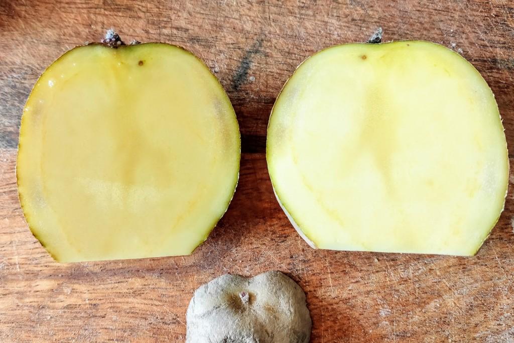 20210223_potato-4