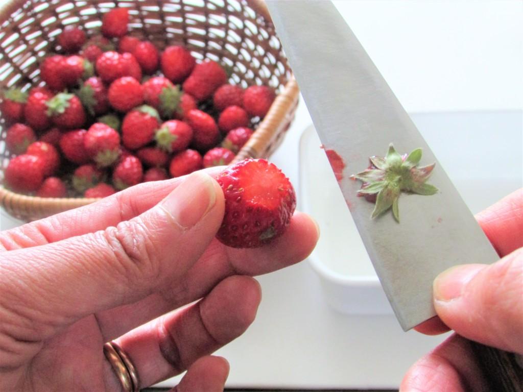 strawberryjam-honey (1)
