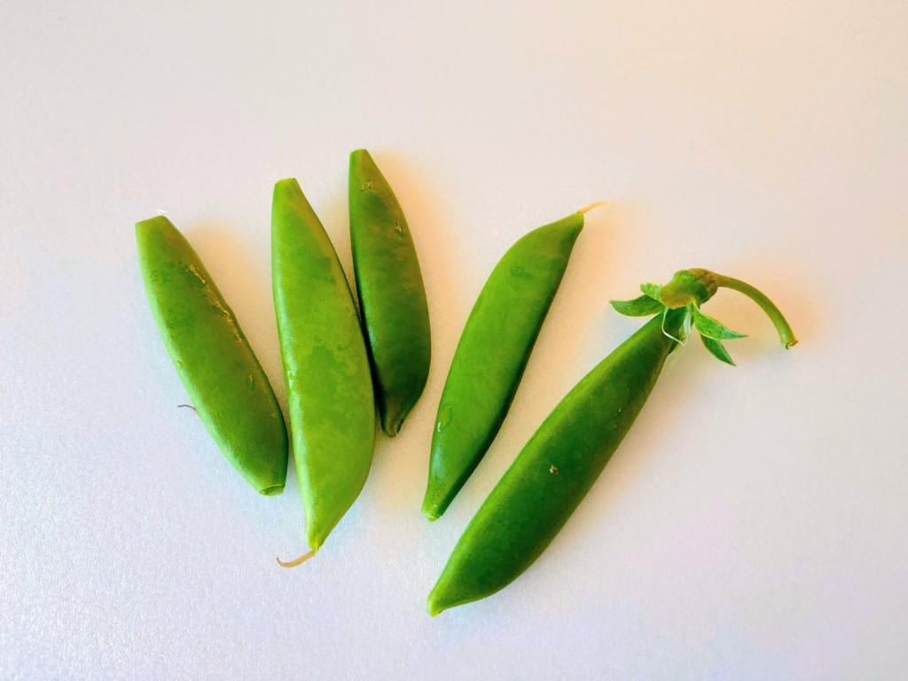 bean10