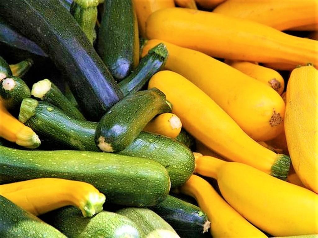 cucumbers-9