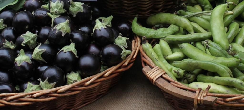 eggplants,nasu,endo,beans