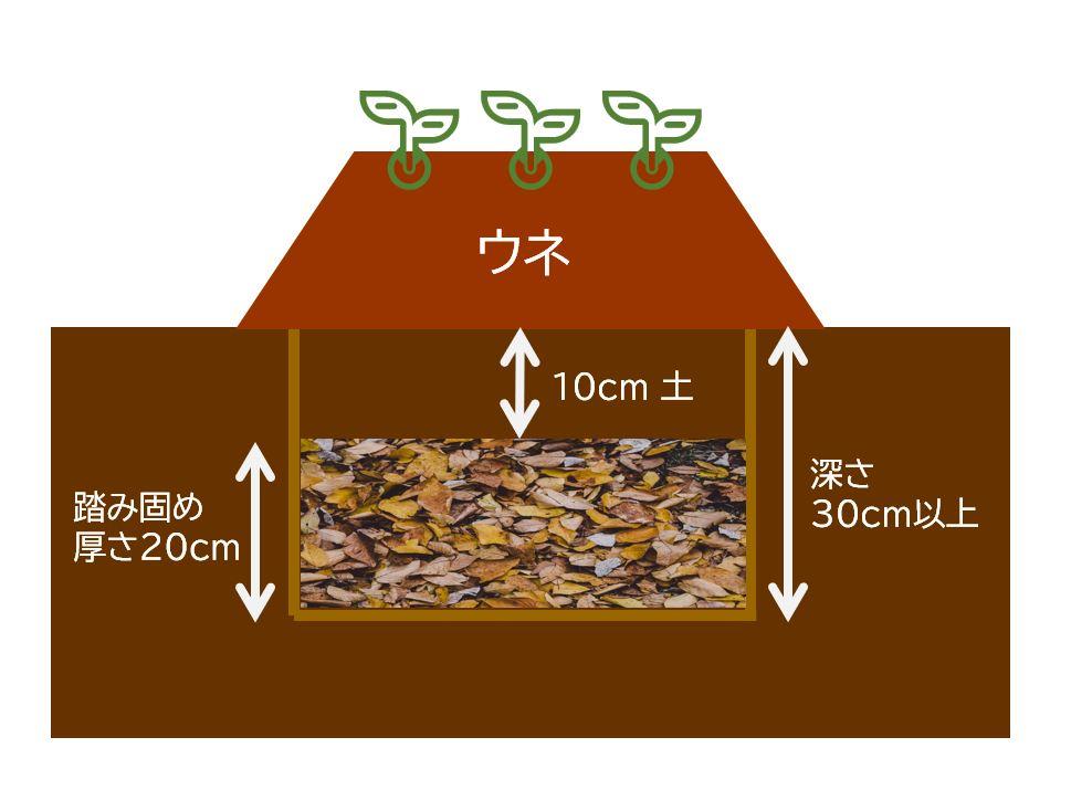 ochiba-doko,fallen leaf floor