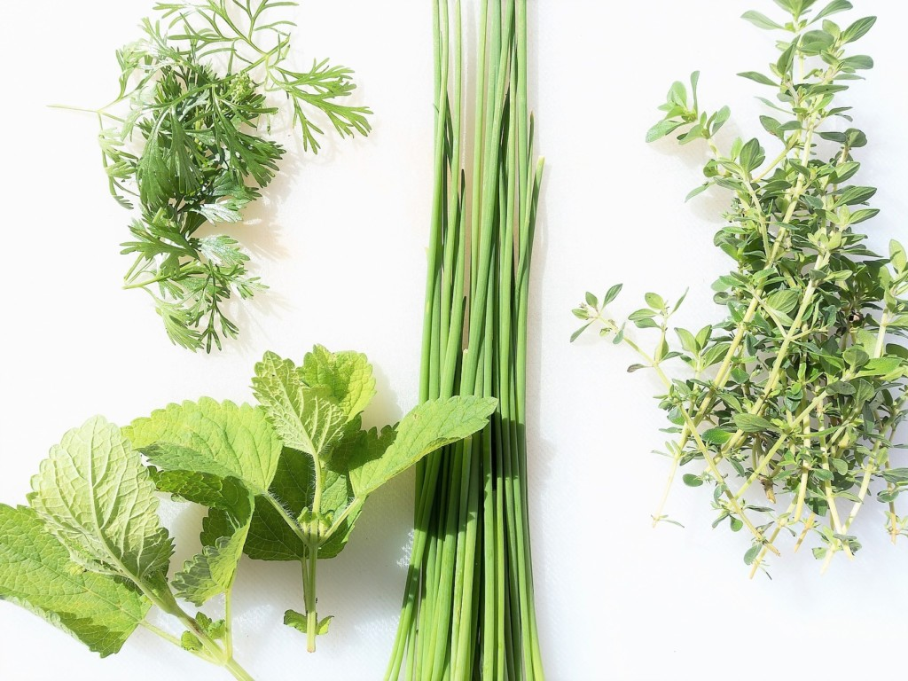 herb,spices