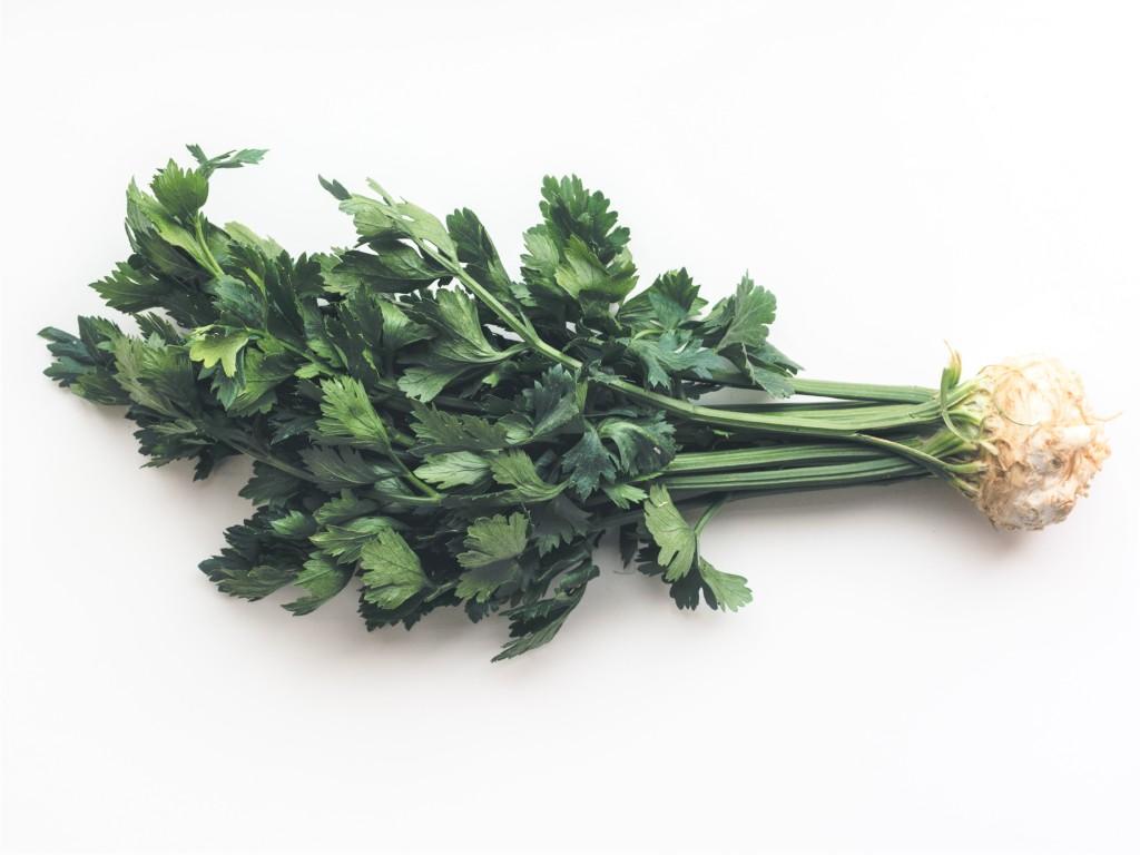 celery-101