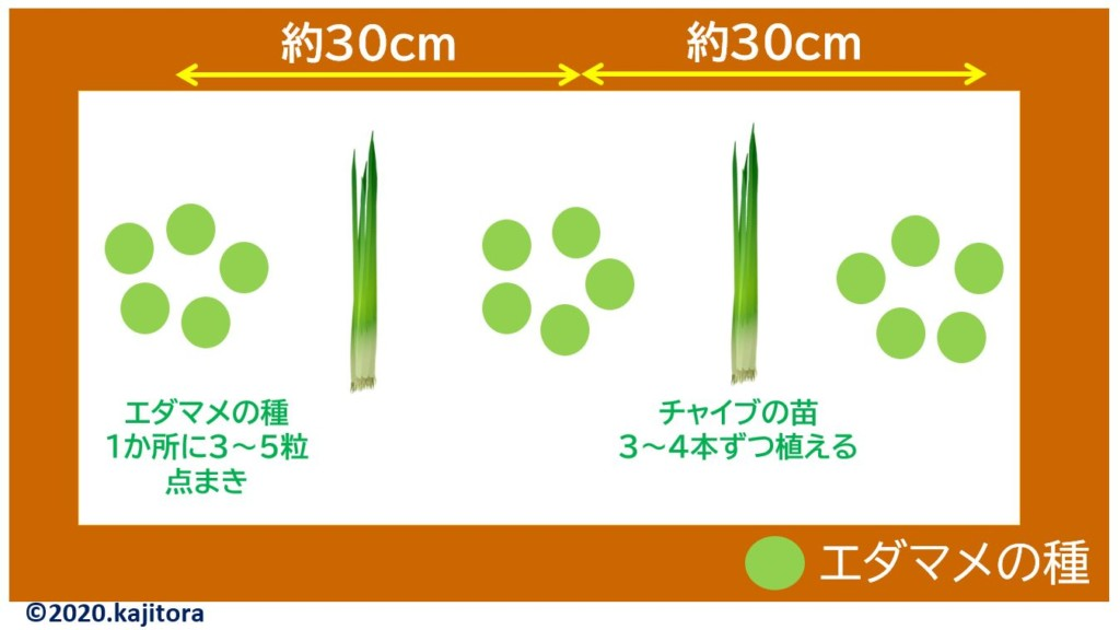 edamame,chives-r