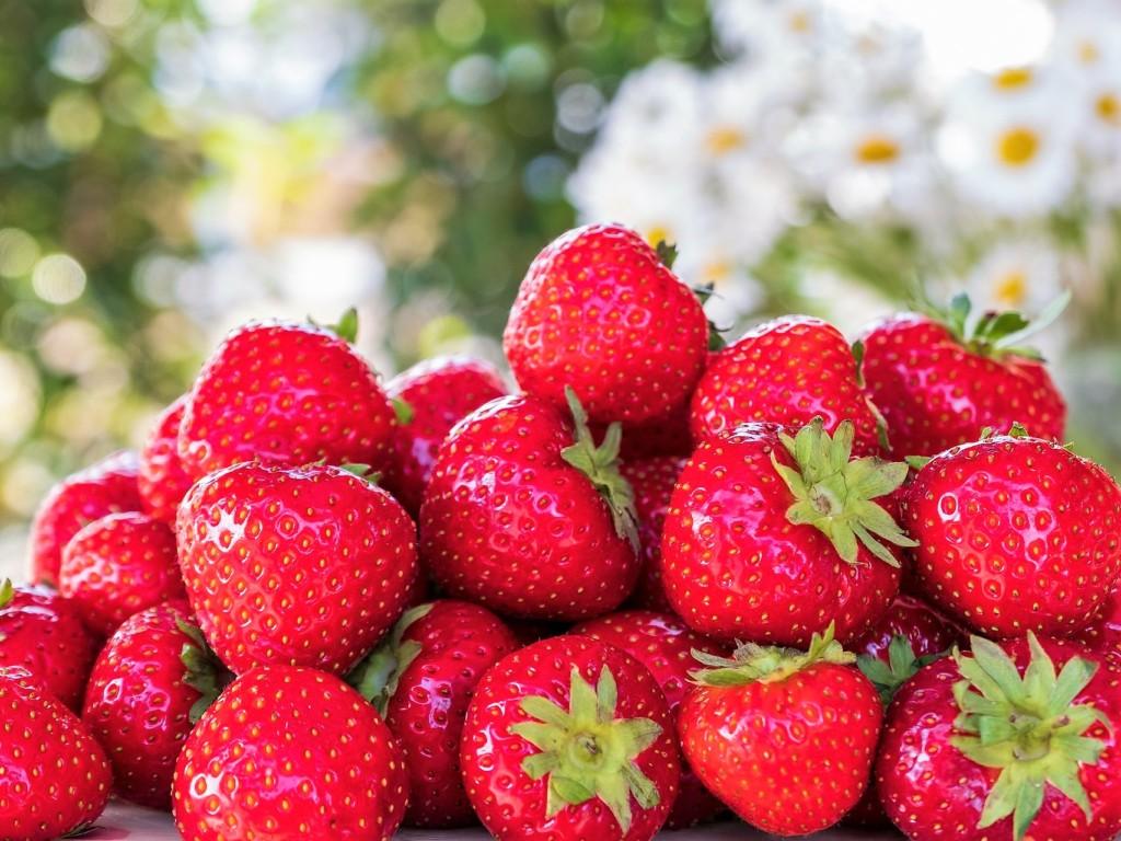 strawberries-10