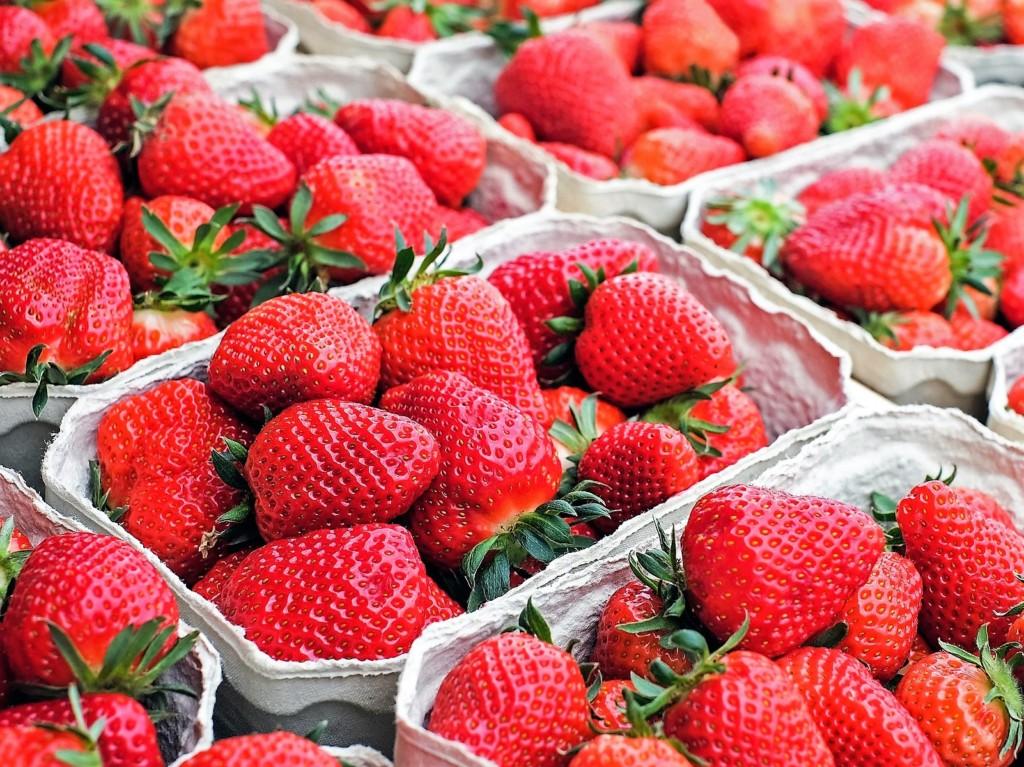 strawberry-14