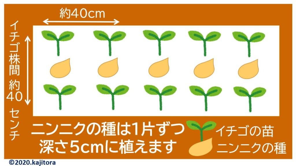 strawberry,garlic-2