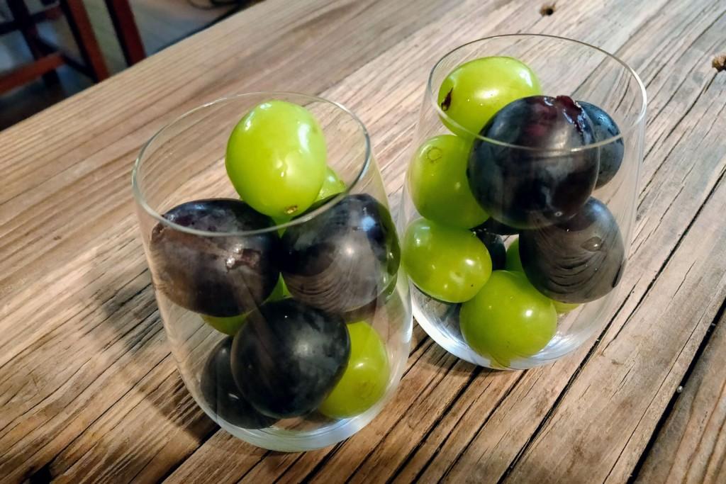 riedel,winetumbler (11)★