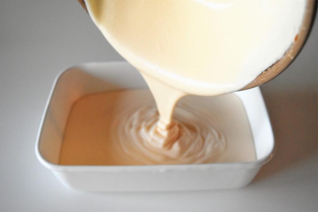 vanillaicecream (17)