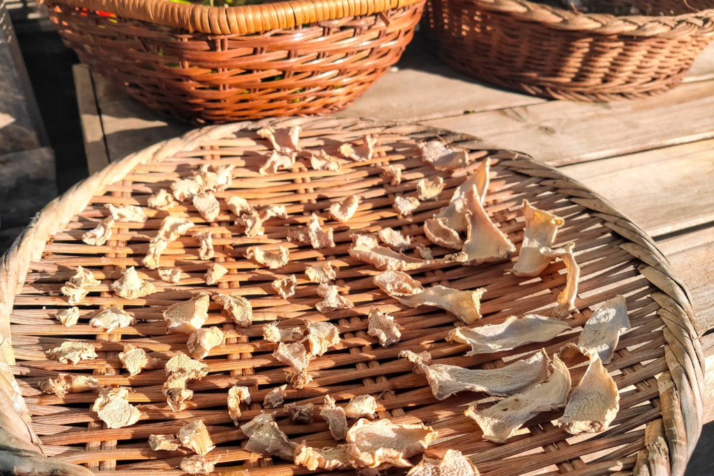 dried ginger,kanso syoga (3)