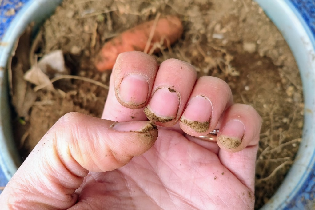 soil,nails (7)
