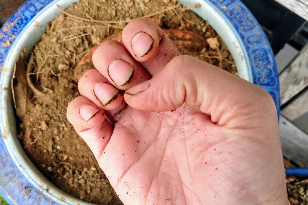 soil,nails (9)