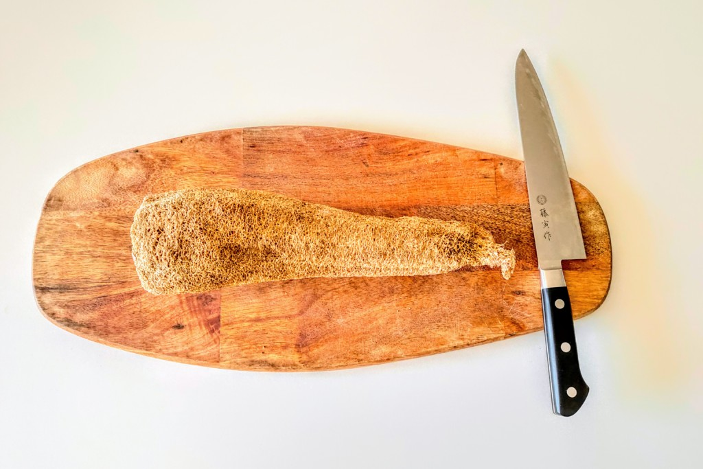 hechima,sponge-2