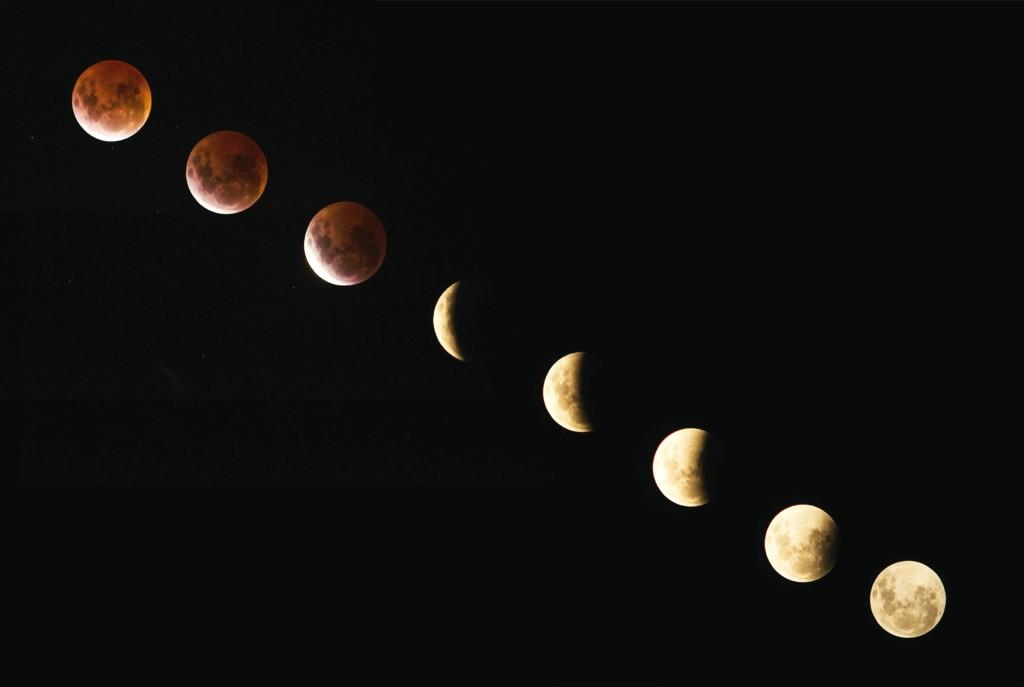moon,shingetsu,tanemaki