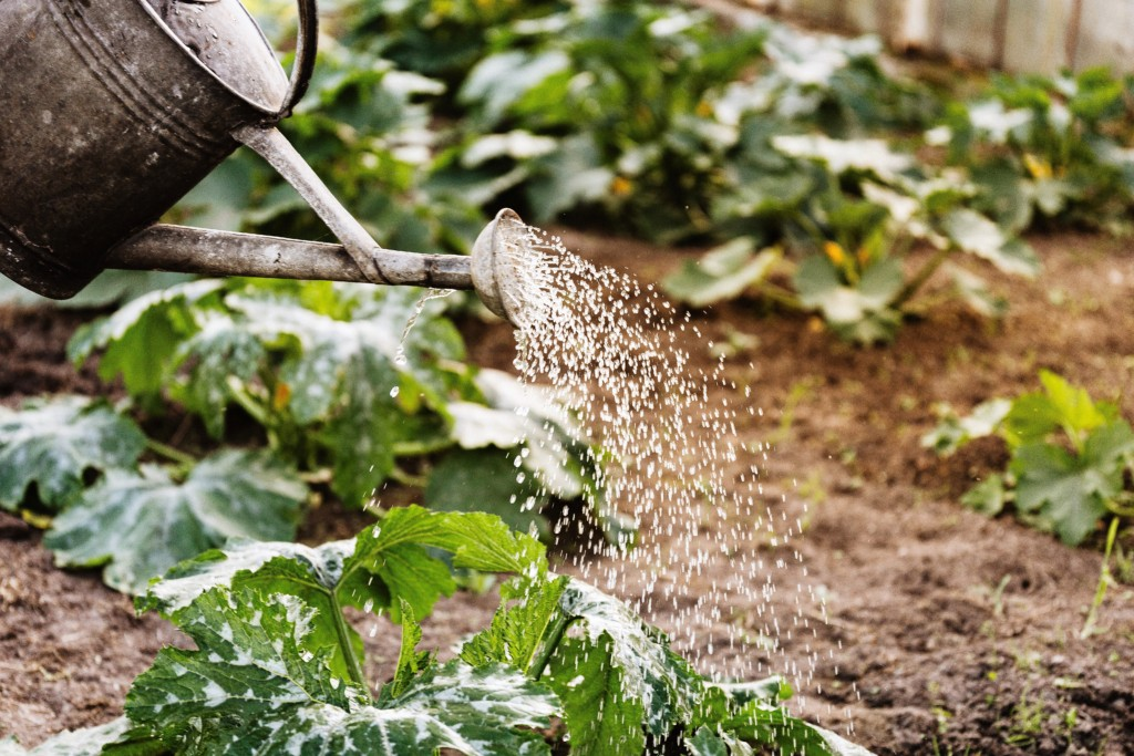 watering-can-_11