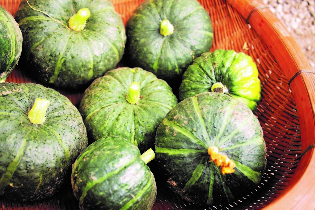 kabocha,pumpkin