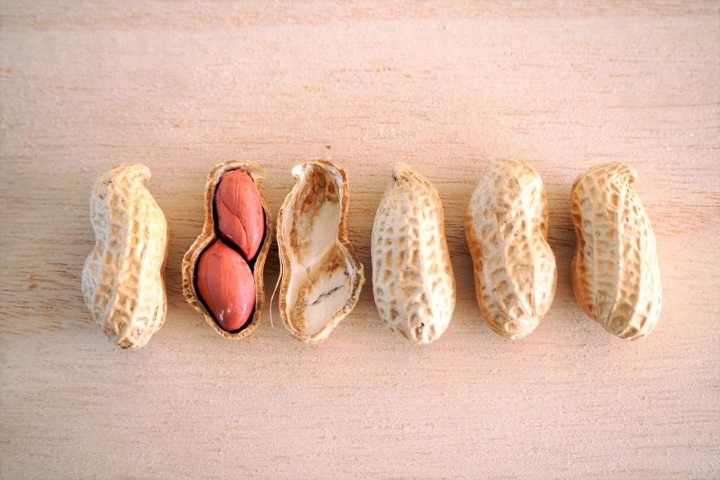 rakkasei,peanuts-13 (1)
