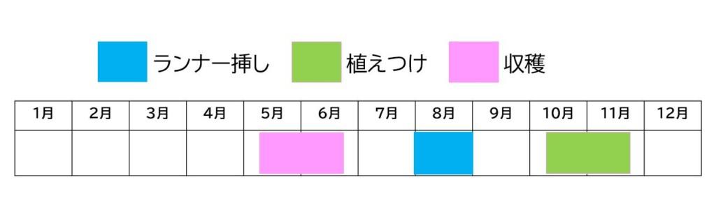 Strawberry,tsuchidukuri-2